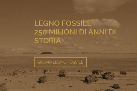 Website design for luxury products – Fossil Wood, Trentino, Italy